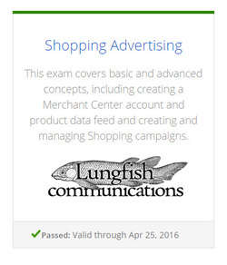 Adwords Shopping Exam