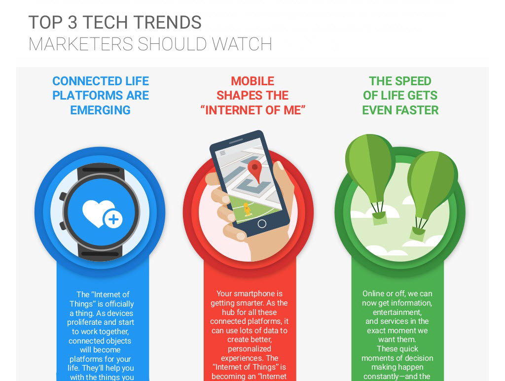 Search trends infographic